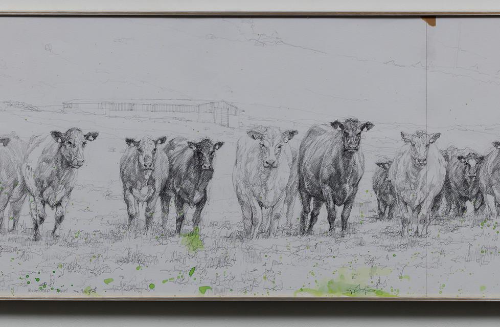 Boghead Farm