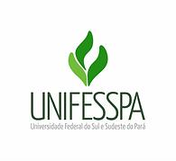 UNifesspa.cor.png