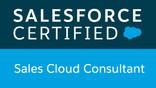 Salesforce Cloud Consultant Certificate
