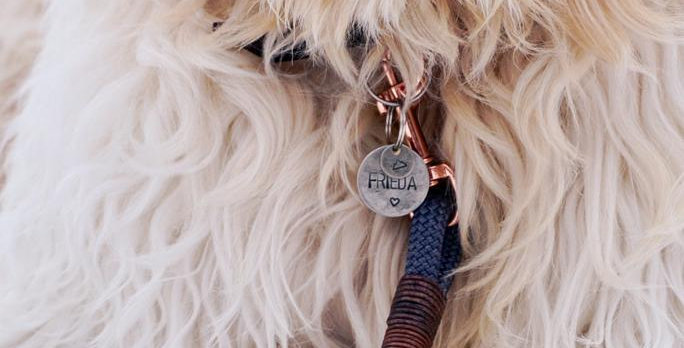 Kleiner Extra-Anhänger für Hundemarke