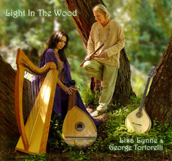 Light-in-the-wood_large.jpg