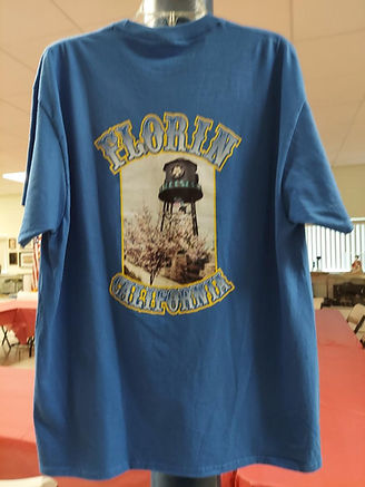 Back view of water tower shirt.jpg