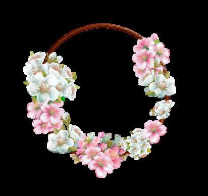 flower-frame-rosa-flowers-borders-png-23