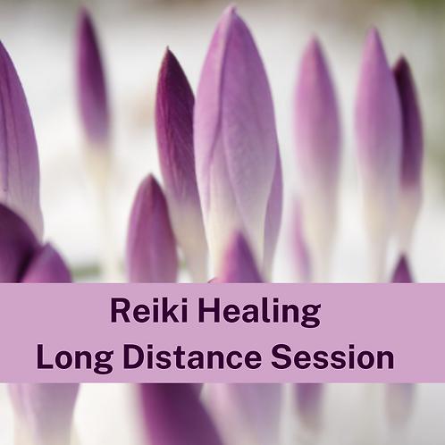 Reiki Healing Session (Long Distance)