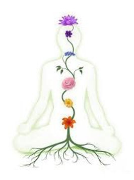 Chakra Clearing Session