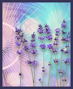 Reiki Page Main Picture (3).png