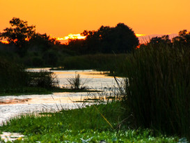 sunset-5-640x800.jpg