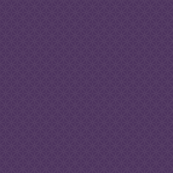 Texture_Purple Back.png