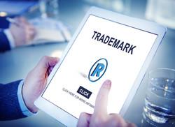 Saberi Law Website Trademark Image