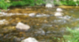 stream-Monadnock.jpg