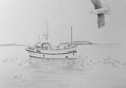 Fisking på Færøyane - A2