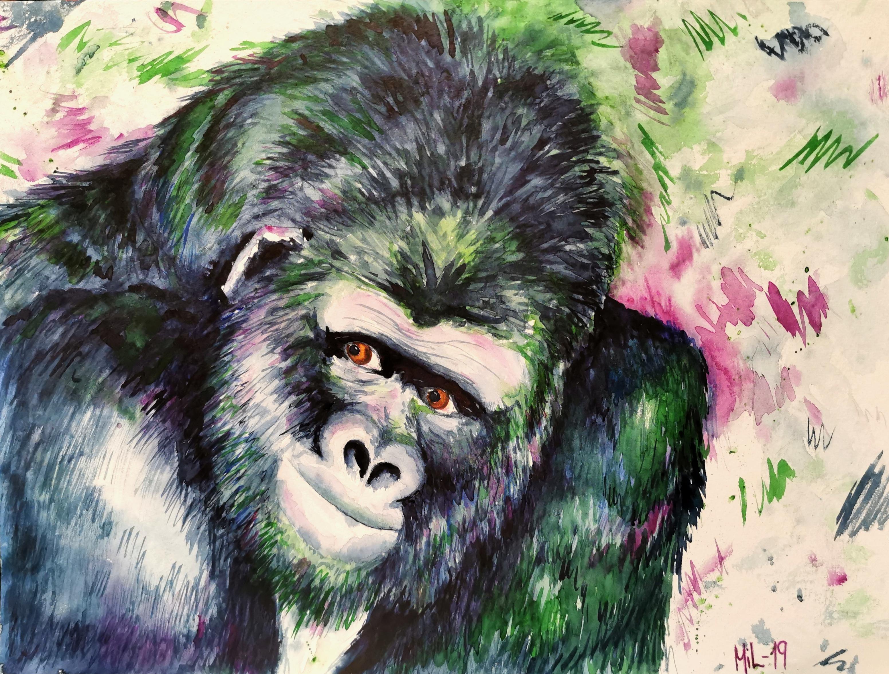 Gorillaen