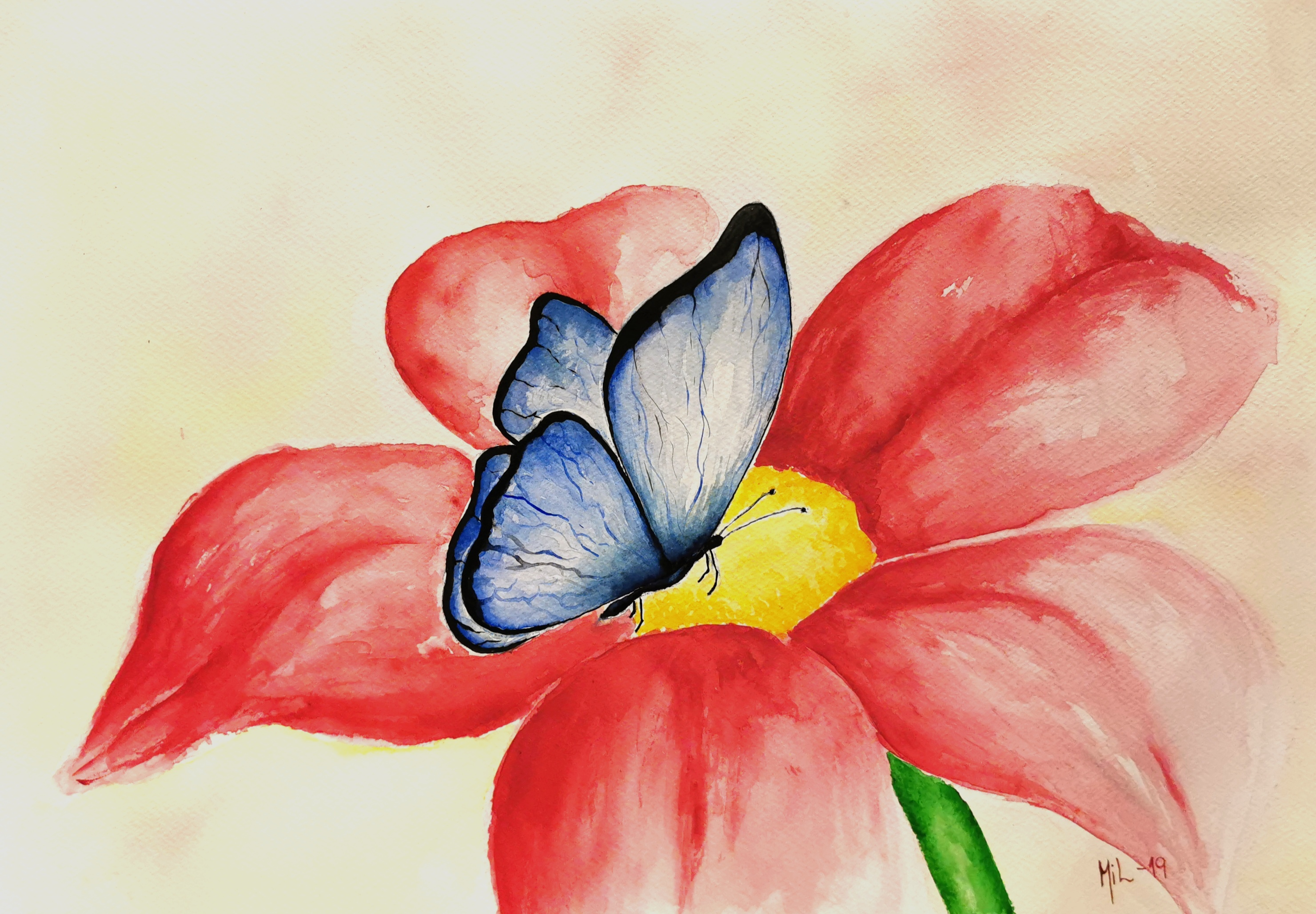 Sommarfugl på blome