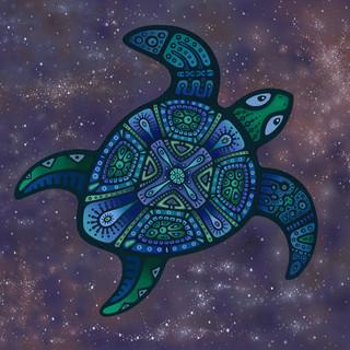 Cosmic Turtle