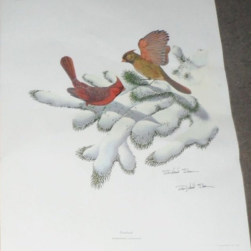 """""""Cardinal"""" Print by Richard Sloan and Certificate"""