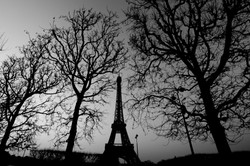 Eiffel Tower Shape