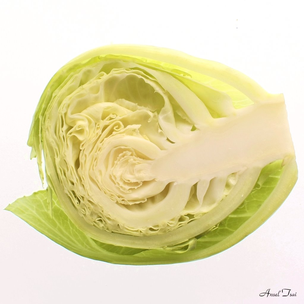 Into Cabbage