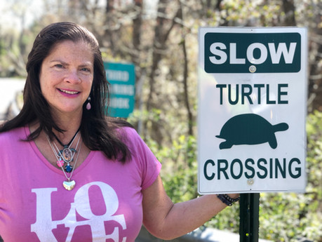 Crossing the street together - Slowing down for Turtles.