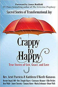 BookCover-Crappy-To-Happy.jpg