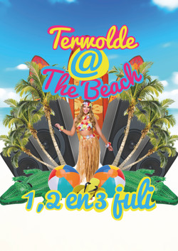 Terwolde _ the beach