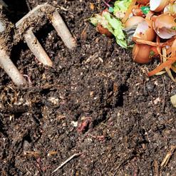 Du compost comme avant, bon pour notre terre