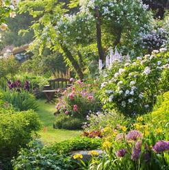 Un beau jardin rien que pour les insectes