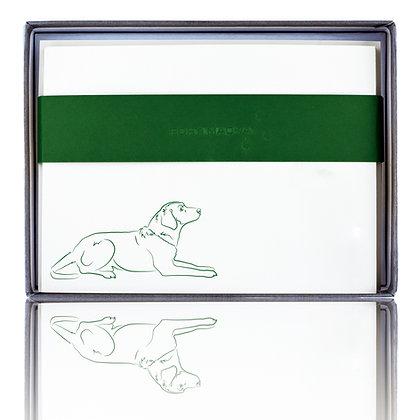 Rory Mackay Labrador          10er Box