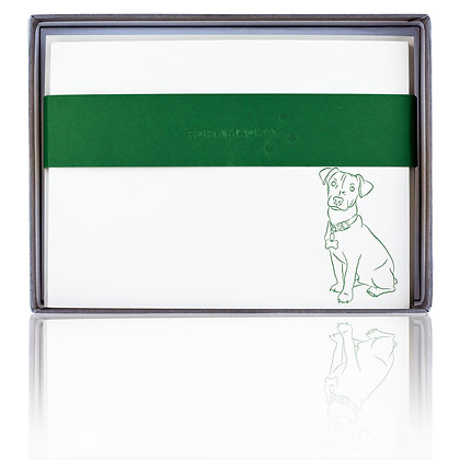 Rory Mackay Jack Russell Terrier 10er Box