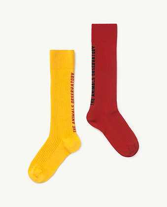 The Animals Observatory Worm Kids Socks (Red/Yellow)