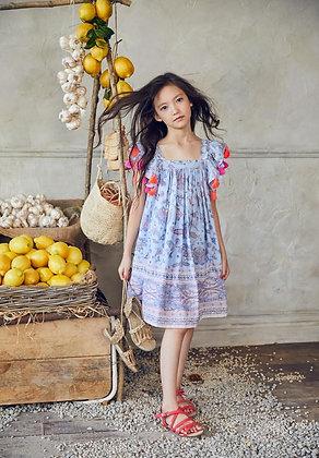 Nellystella Chloe Dress (Paisley Flower)