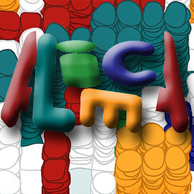 Smart Alice Web Design