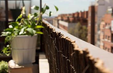Un pequeño paraíso en Madrid