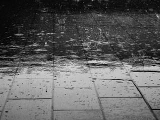 As Chuvas Estão Chegando