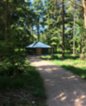 Haldon Yurt1.JPG