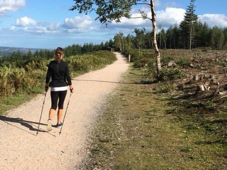 Discover Nordic Walking at Haldon Forest Park