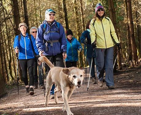 Nordic walking at Haldon 6.jpg