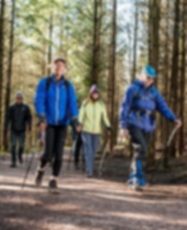 Nordic walking at Haldon 1.jpg