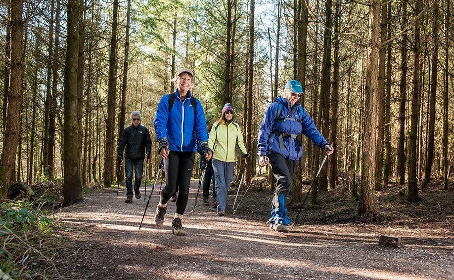 Nordic walking at Haldon 1.jpg