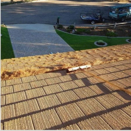 A Better View Exterior Cleaning San Diego Gutter Cleaning%20at%209.30_edit