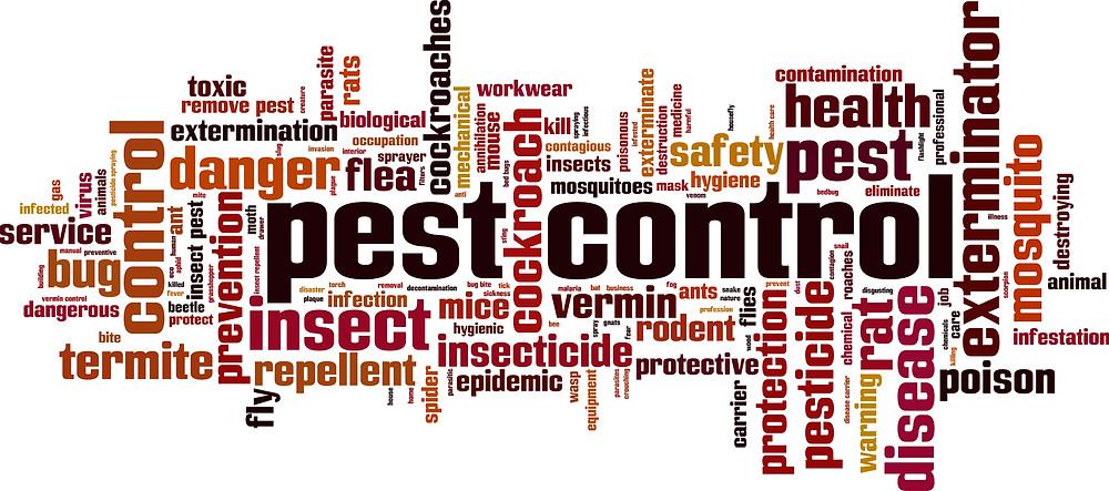 Pest Prevention Picture