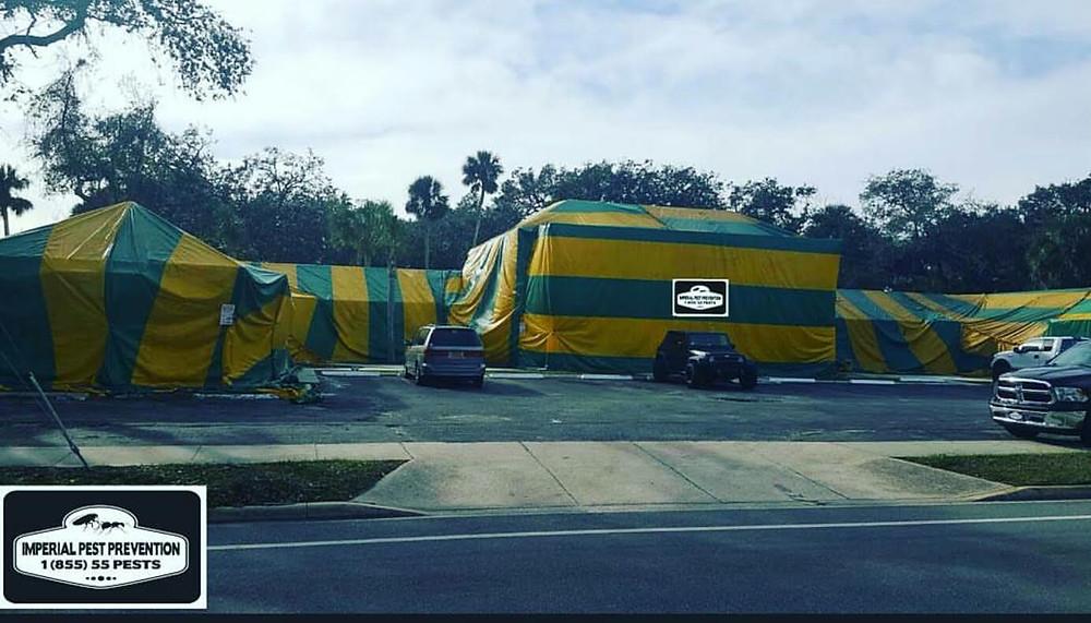 Daytona Beach Tent Fumigation