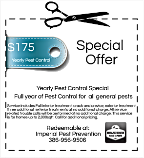 imperial pest prevention yearly coupon special, Pest Control, Pest Control Company, Pest Control Daytona Beach, Pest Control Ormond Beach, Pest Control Company Daytona Beach, Pest Control Company Ormond Beach