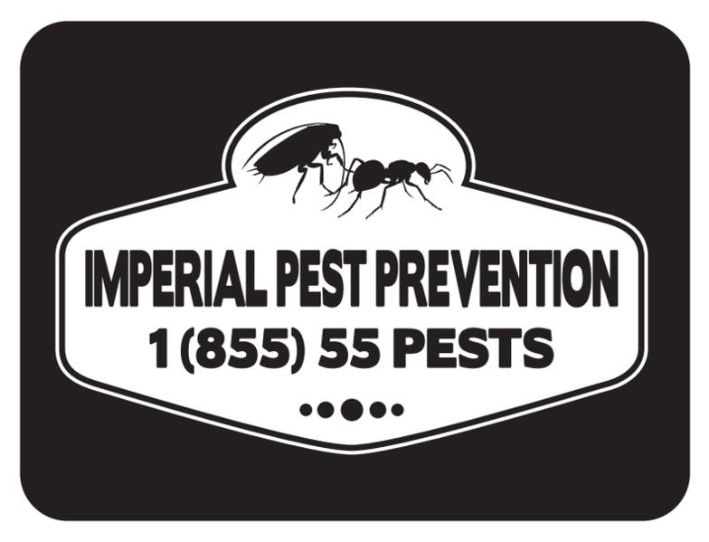 Daytona Beach Pest Control