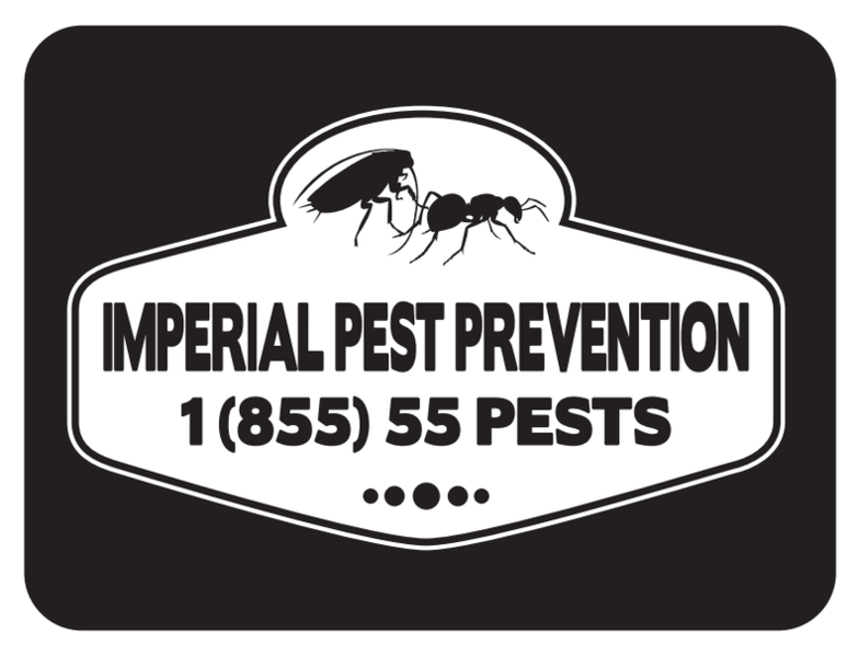 Pest Control Blog | Daytona Beach | Imperial Pest Prevention