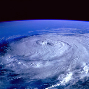 Hurricane Season Pest Control Tips