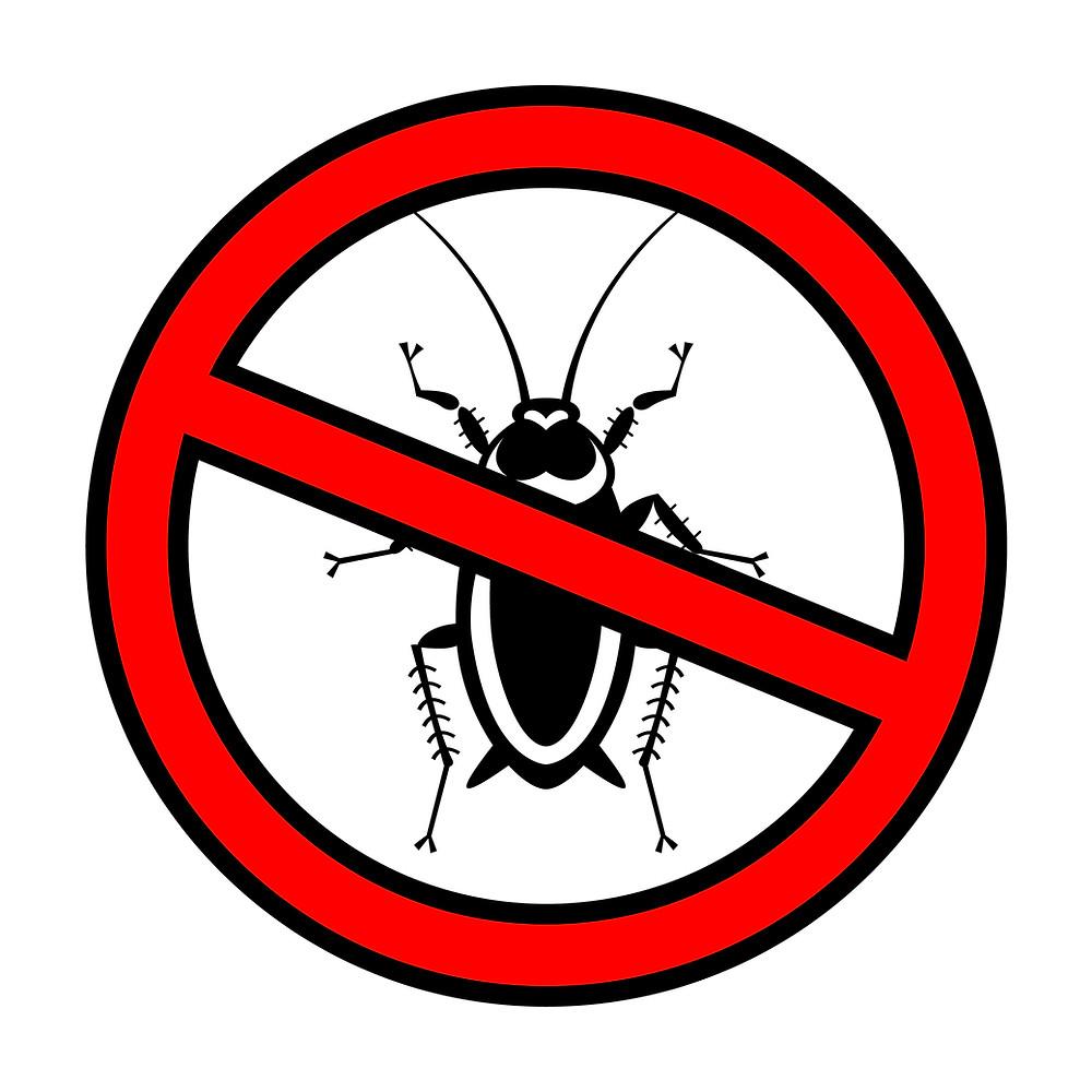 no bugs vector