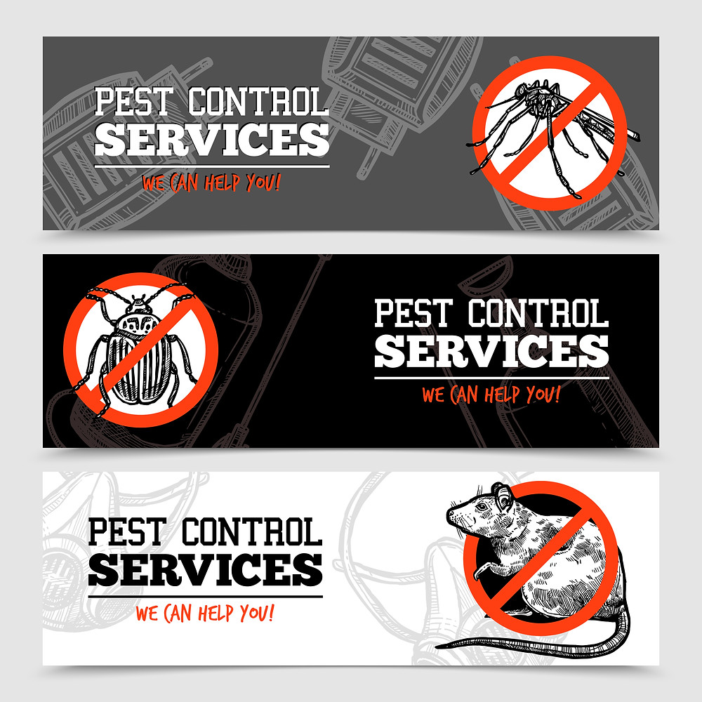 Pest Control services Daytona beach