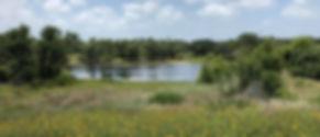Linda S. Castro Nature Sanctuary.jpg