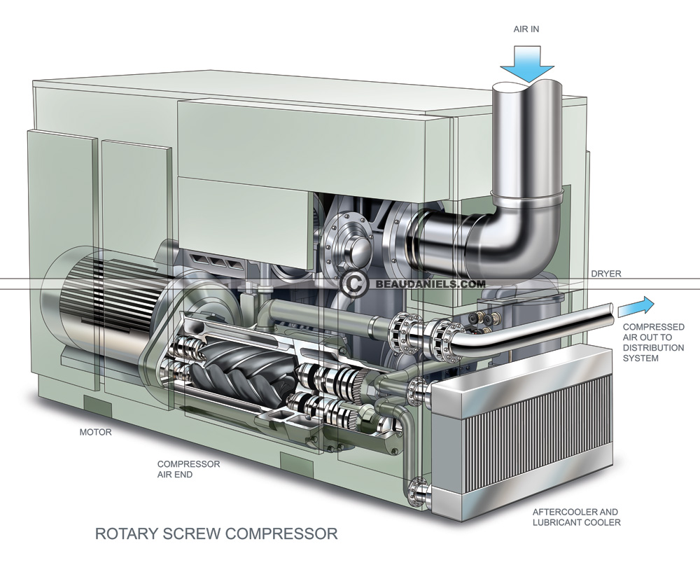 rotary-screw-compressor cutaway.jpg