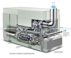 rotary-screw-compressor cutaway.jpg